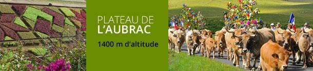 Plateau de l'Aubrac